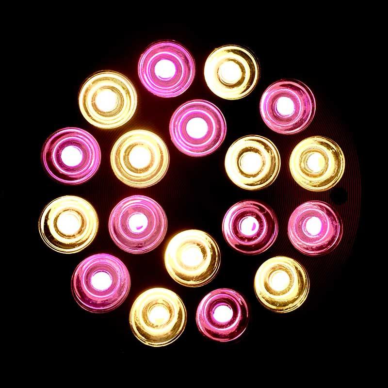 BionicSpot_18-3W-S_light-800x800.jpg