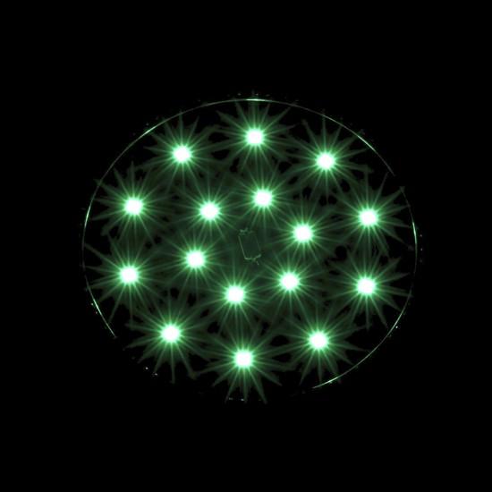 BionicSpot Onyx Green