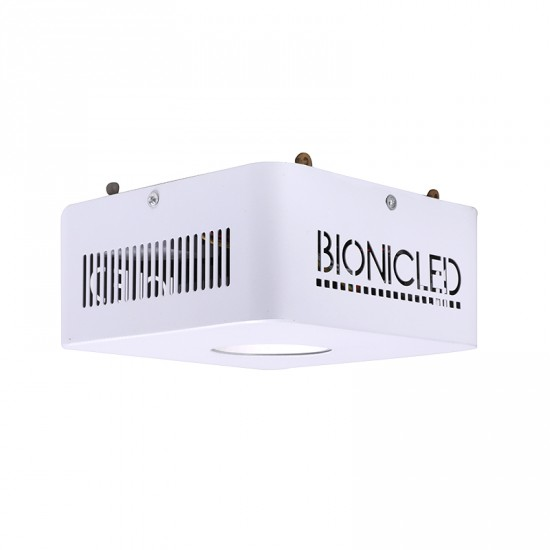 BionicPan P250WCI